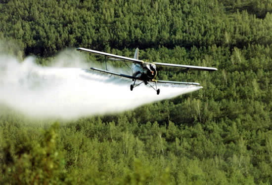 zaprasivanje komaraca 2015
