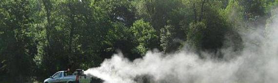 Akcija suzbijanja komaraca u Borovu sa zemlje