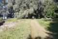 Uređen put do kupališta Ostrvo