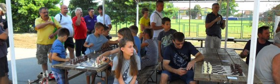 Brzopotezni šahovski turnir u Borovu