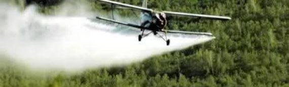 Tretiranje komaraca u Borovu
