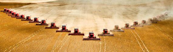 DOPUNA UPUTE za provedbu Naputka ministra poljoprivrede za postupanje u primjeni odredbe…