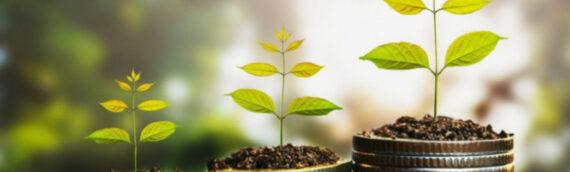 Pravilnik o uvjetima, kriterijima i načinu ostvarivanja prava na poticajne mjere za razvoj poljoprivrede na području Općine Borovo u 2021. godini