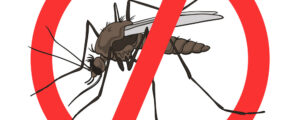 Suzbijanje komaraca iz zraka i sa zemlje