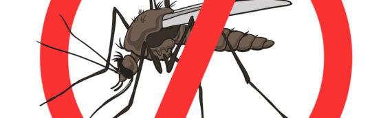 Suzbijanje komaraca sa zemlje